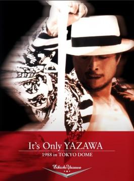この画像は、このページの記事「E.YAZAWA 88 無料 おすすめ YouTube 動画 まとめ集!」のイメージ写真画像として利用しています。